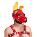 Puppy Play - Pony Play
