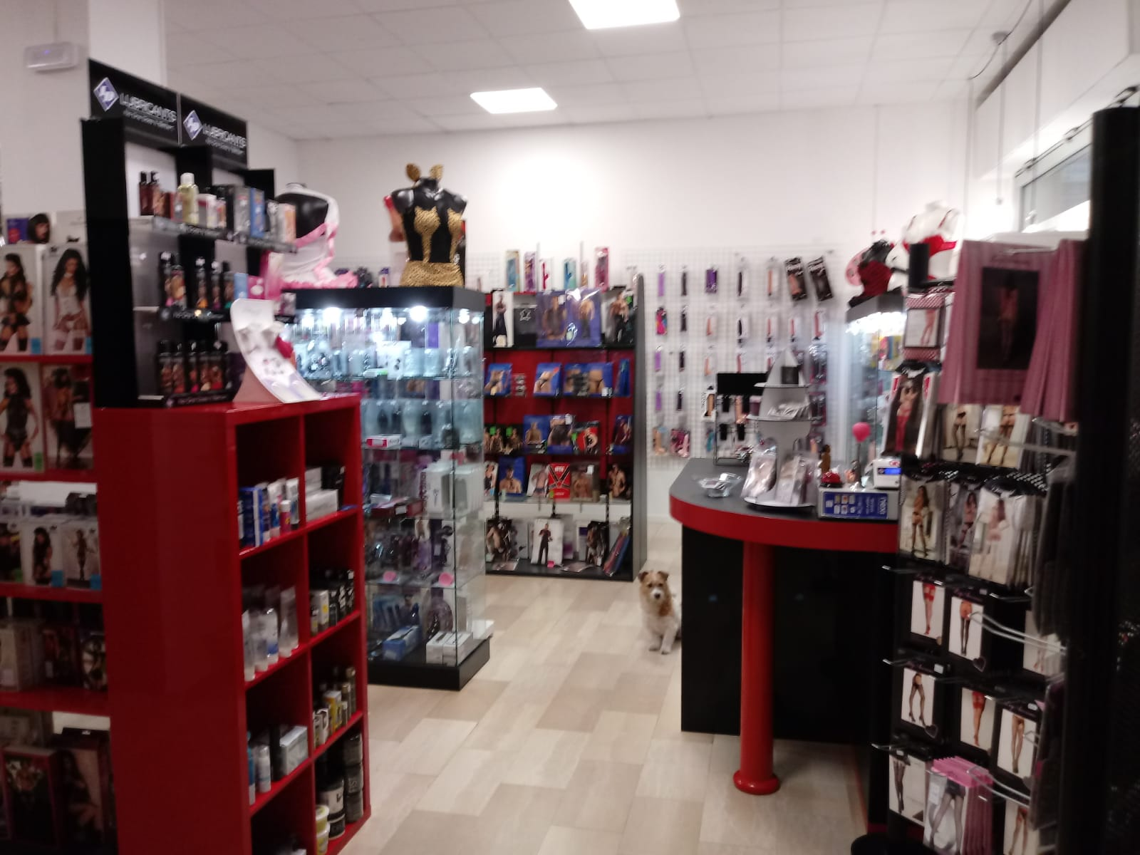 La Boutique dell'Eros Sexy Shop Bologna 01