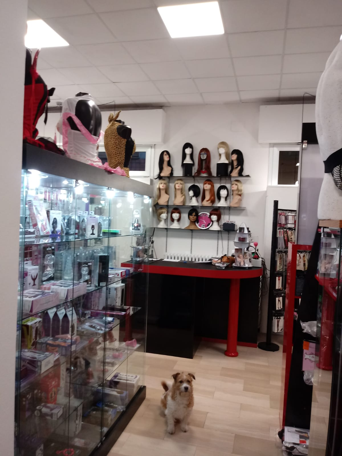 La Boutique dell'Eros Sexy Shop Bologna 14